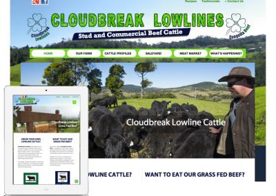 Cloudbreak Lowline Cattle